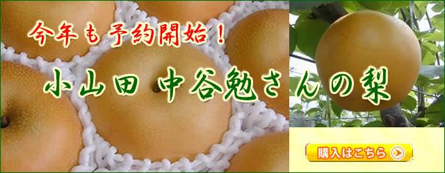 小山田 中谷農園の梨