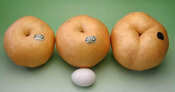 あたご梨と卵