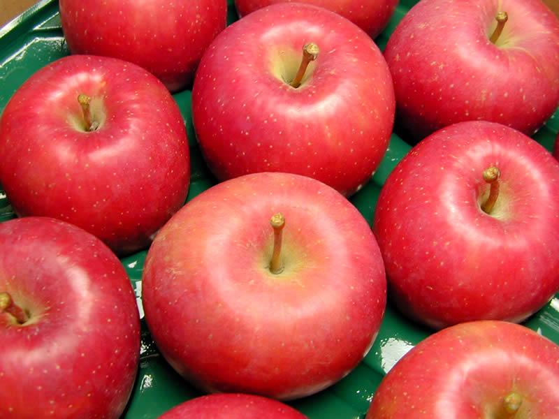 伊藤農園のりんご