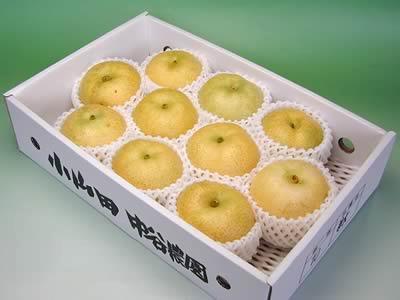 中谷農園の梨 菊水