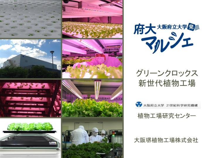 大阪府立大学植物工場