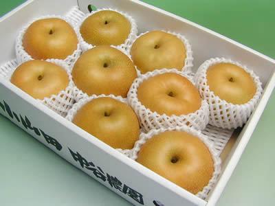 中谷農園の梨 愛甘水