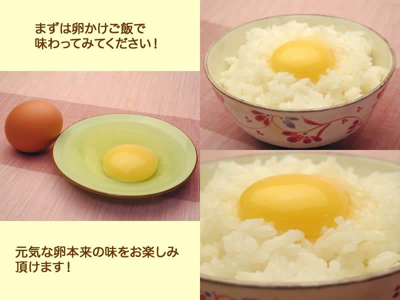 まずは卵かけご飯で味わってみてください