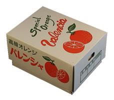 国産バレンシアオレンジの箱