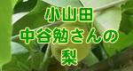 中谷勉さんの梨