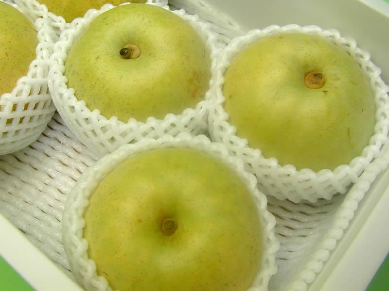 中谷農園の梨 秋麗